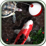 iFish Pond HD