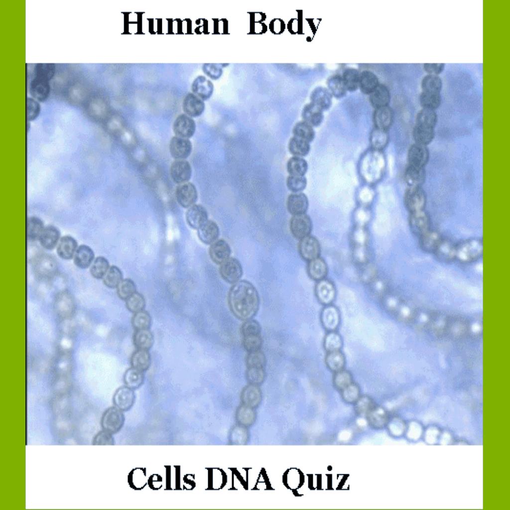 HumanBodyCellsDNAQuiz